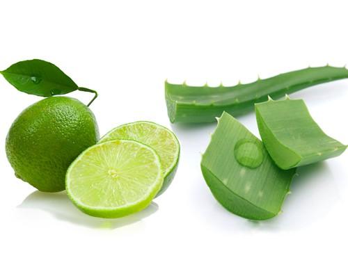Chanh và nha đam là 2 nguyên liệu trị mụn cám ở mũi hiệu quả.